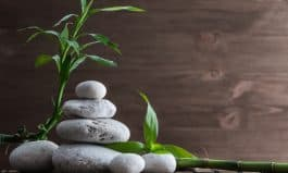 How Goodshop is Helping Naturopathic Medicine Cure The World