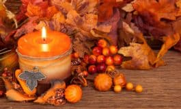 Home Autumn Decorations on a Budget