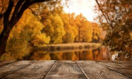 Empty wooden table over the autumn landscape