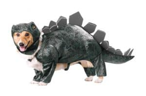 Cutest (and Funniest) Pet Halloween Costumes