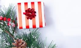 Holiday Gift Giving Guide: Gifts Under $50