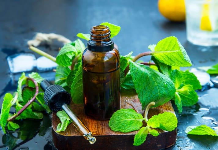 Get the Essentials on Essential Oils